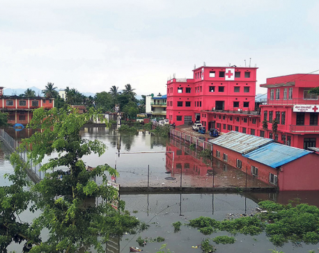 Heavy rainfall inundates Damak Bazar