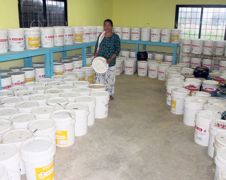 Women's beekeeping joint venture makes their dream come true