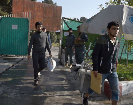 Germany deports largest group yet of failed Afghan asylum seekers