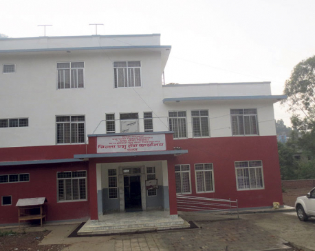 Satti Small Customs gets new chief every month