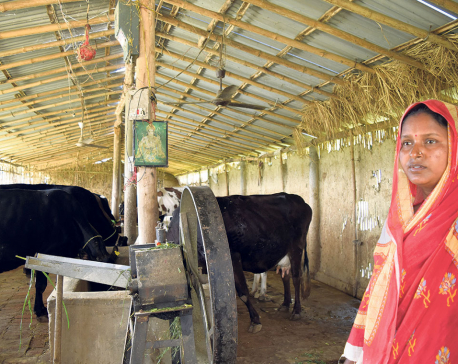 A Madhesi woman sets example for many