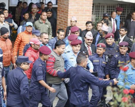 Prez grants amnesty to murder-convict Bal Krishna Dhungel