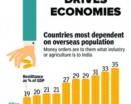 Infographics: How diaspora drives economies
