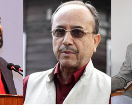 Nidhi appointed Vice President, Khadka Gen Secy, Mahat Joint Gen Secy