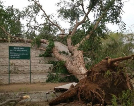 Rainstorm kills at least 91, injures over 160 in India