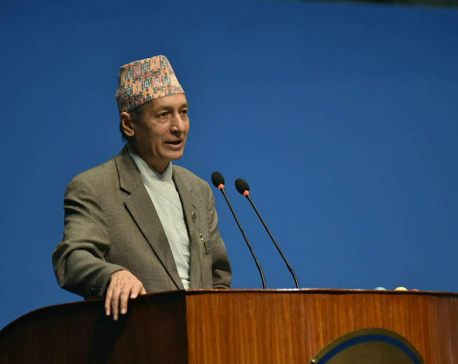 Fin. Min urges Nepali diaspora for investments