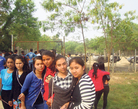 Agro sector attracting tourists in Rupandehi