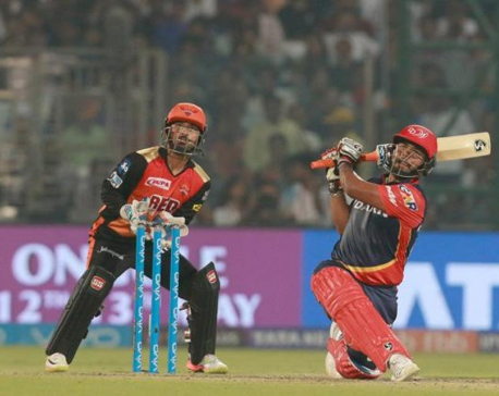 Sunrisers Hyderabad knock out Delhi Daredevils, in playoffs