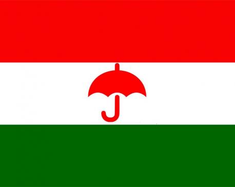 RJPN may join govt if amendment pledged