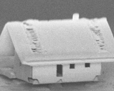 Scientists create world's smallest house on just 300 square micrometres