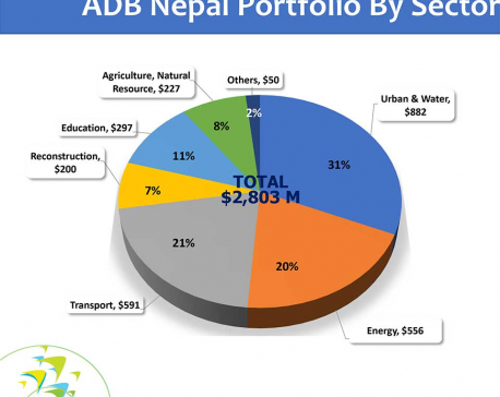 More funds depend on progress in project performance: ADB official
