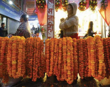 Flowers and fruits of Tihar