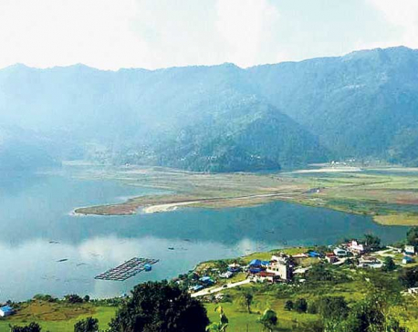 Locals take initiative to conserve Phewa Lake's water sources