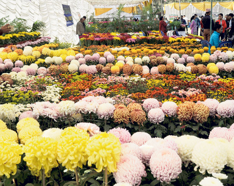 Floriculture, a neglected sector with high prospects: Entrepreneurs