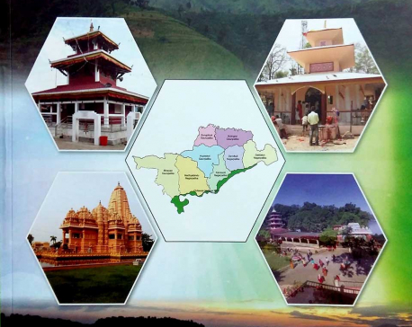 Plan envisions developing Nawalpur as model district