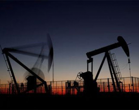 Oil plunges to lowest in a year despite potential OPEC cut