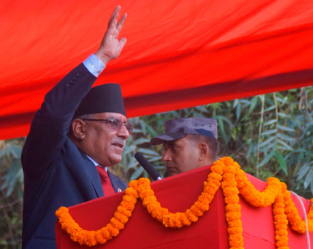 Contribution based social security scheme appreciative: Chairman Dahal