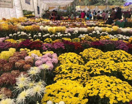 Godavari Flower Expo 2018 kicks off