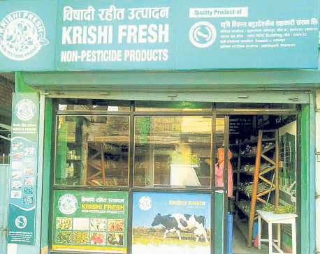 Krishi Fresh accuses ex-employees