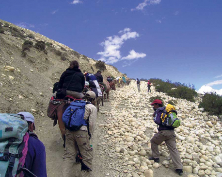 Amid lockdown, 145 stranded trekkers rescued from Mustang