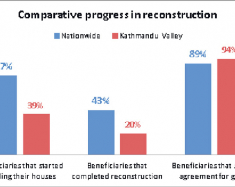 Reconstruction process sluggish in Kathmandu Valley