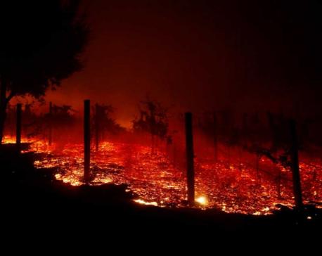 Wildfires rage in California, Trump blames 'forest mismanagement'