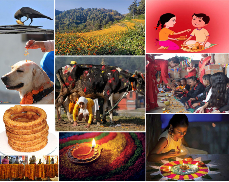 Tihar festival begins from today