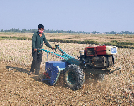 Bhaktapur farmers face fertilizer shortage