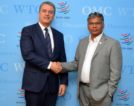 Industry Minister Yadav meets WTO Director General in Geneva