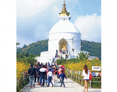Domestic tourism on the rise during festive holidays