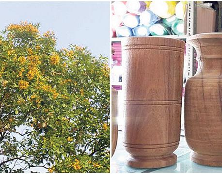 Vijayasar vases gaining popularity