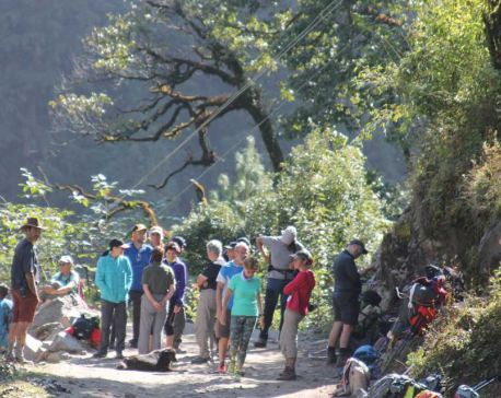 Annapurna foot trail sees influx of trekkers