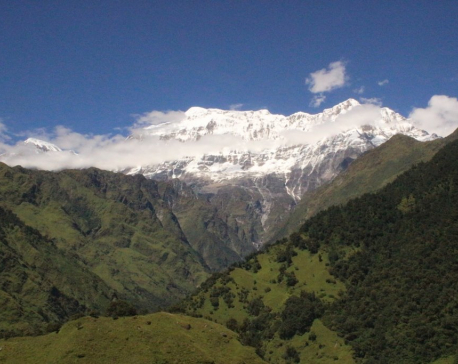 Avalanche kills eight mountaineers in Myagdi