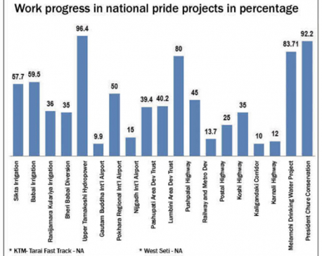 Only 7 national pride projects minimum 50 pc complete