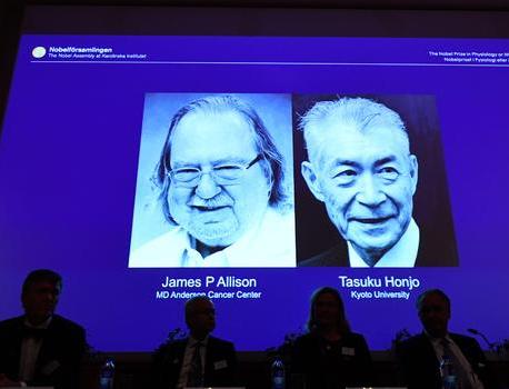 Landmark cancer therapy wins Nobel prize