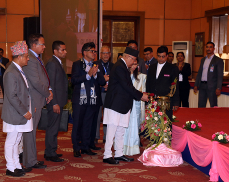 Gov't, private sector and NRN must bring economic prosperity- PM Oli