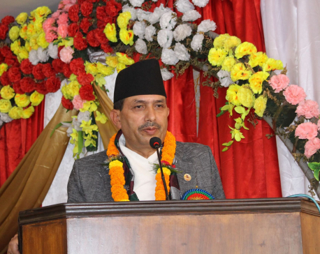 Govt not in hurry to 'hit sixes' to endure long inning: Minister Dhakal