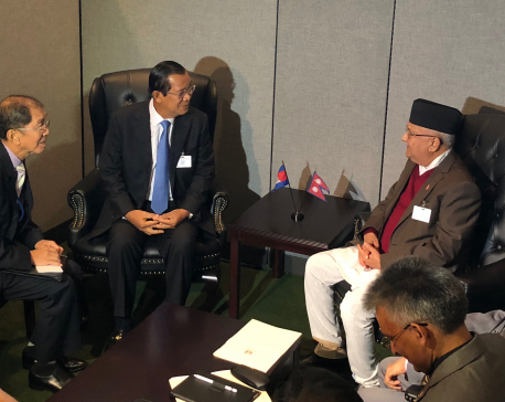 Foreign Minister Gyawali meets his counterparts in NY