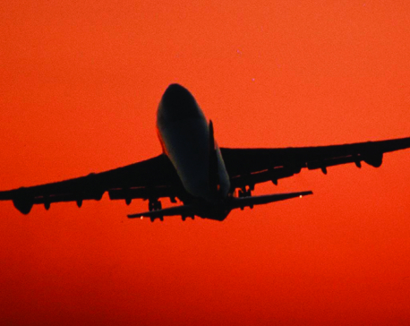 Ecological cost of flying