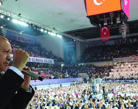 Economic costs of Erdoğan