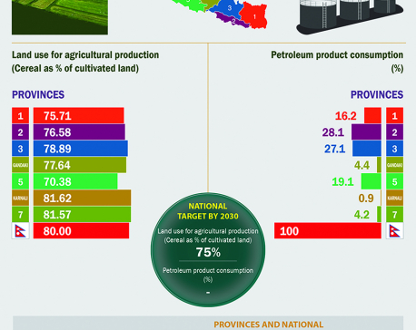 Infographics: Responsible Consumption and Production