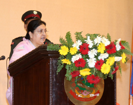 President Bhandari calls for environment protection