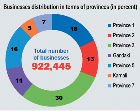 First ever Economic Census finds 922,445 businesses in Nepal
