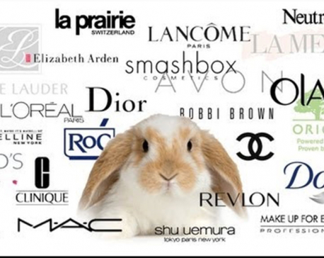These beauty brands are still tested on animals