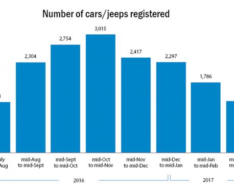 Registration of personal vehicles falls as banks tighten lending