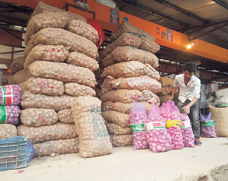 Valley onion price drops to lowest in eight months