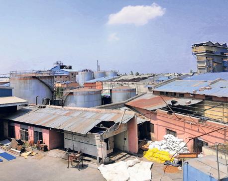 Birgunj factories suffer huge losses in storm