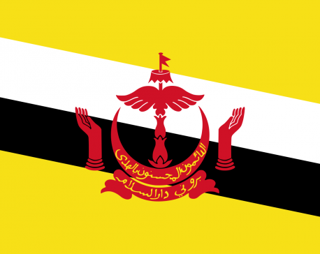 Brunei invokes laws allowing stoning for gay sex, adultery