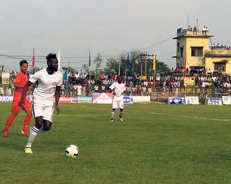 Dauphins into Duhabi Gold Cup semis
