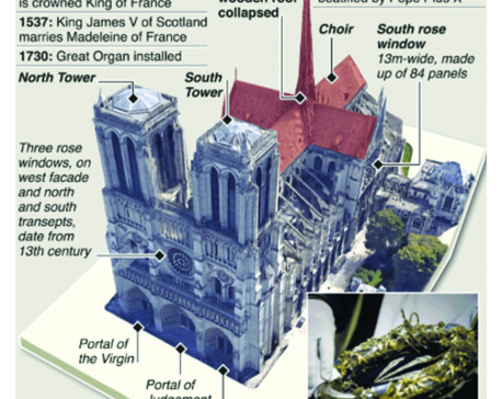 Infographics: History of Notre-Dame Cathedral